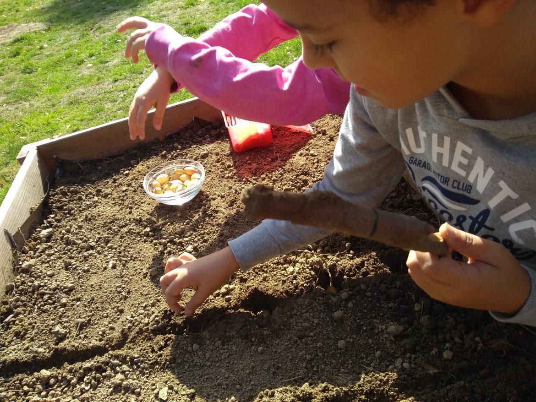 Gemüsegarten mit Kindern