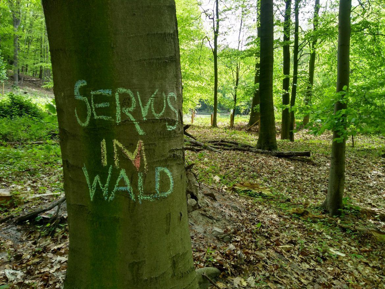 Servus im Wald!
